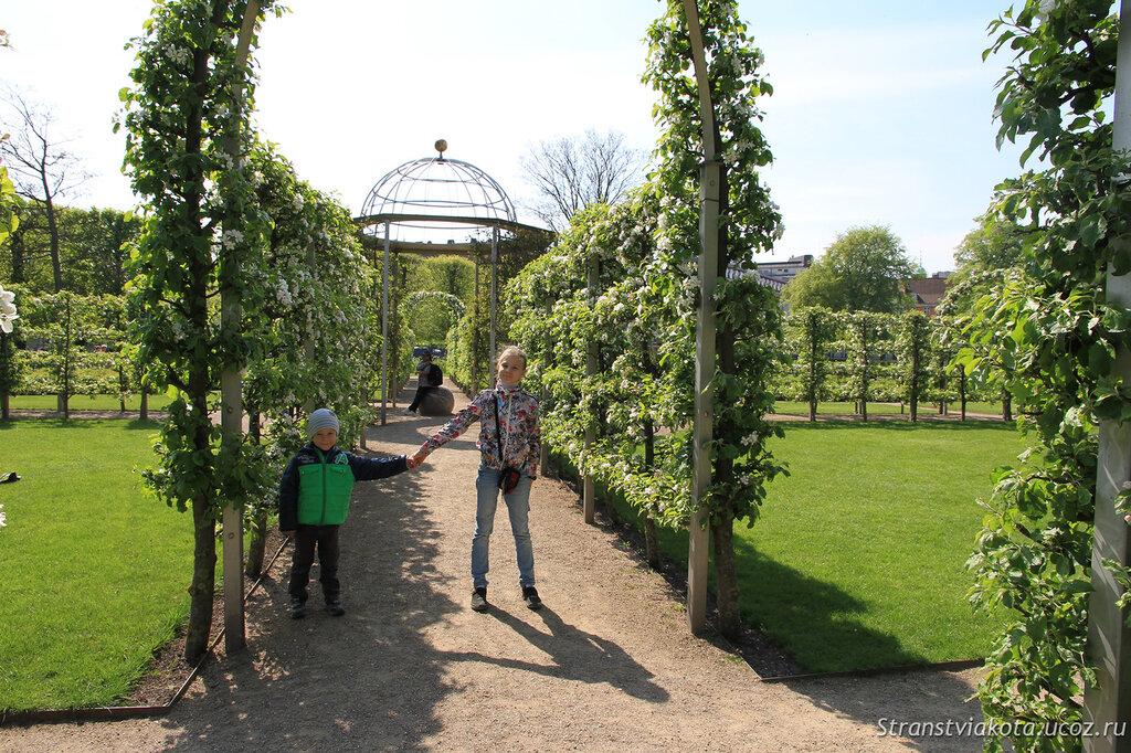 Королевский сад в Копенгагене
