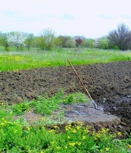 У вскопанной земли, апрель