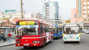 Операция «Автобус» в Приморье: за один день выявлено 136 нарушений