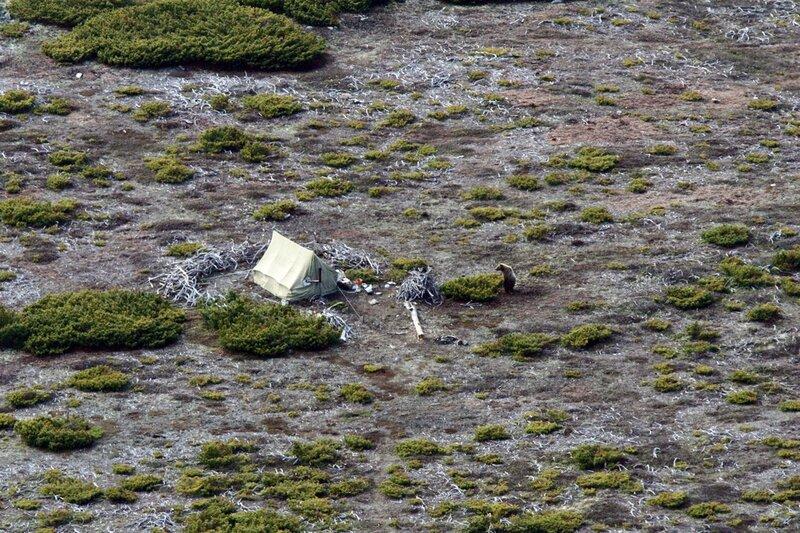 глядит на палатку-1_демо.jpg