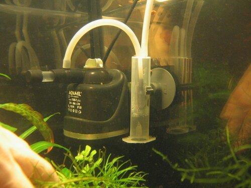 Подарок хозяину аквариума