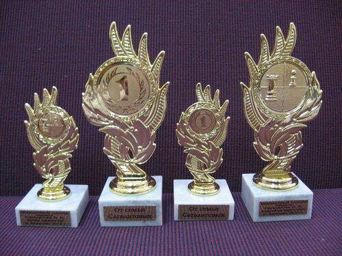 Призы победителям шахматного турнира посвященного памяти В.В.Сагалатова-IMG_6534.JPG