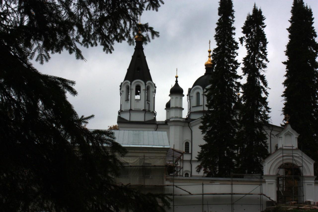 Из-за леса показалиськупола церкви на Белом скиту.