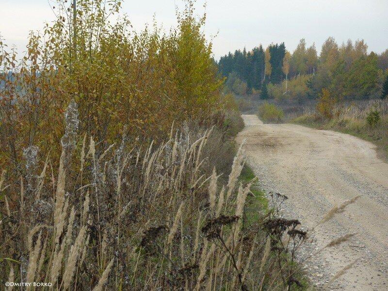 Октябрь 2010
