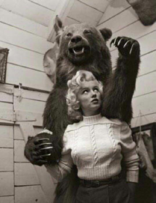 Знаменитости и животные. Marilyn Monroe
