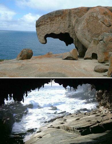 австралия, остров кенгуру