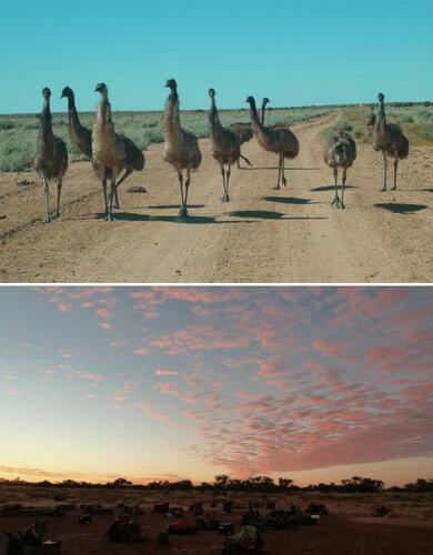 австралия, пустыня симпсонов