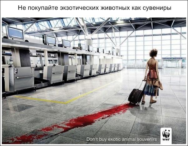 убедительная реклама_28.jpg