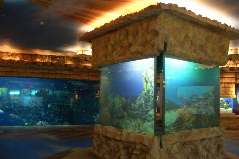 Пекинский зоопарк, Океанариум