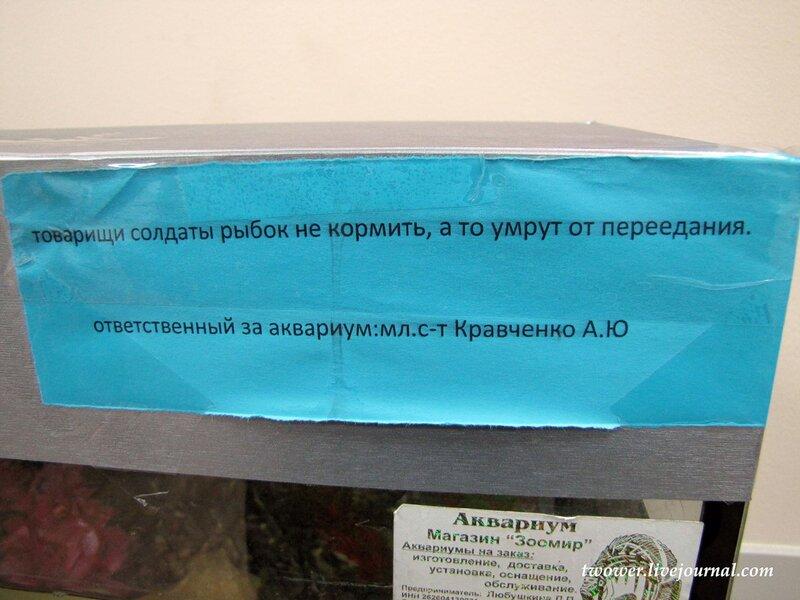 http://img-fotki.yandex.ru/get/5406/elberet545.11/0_4a929_a2f15db6_XL.jpg