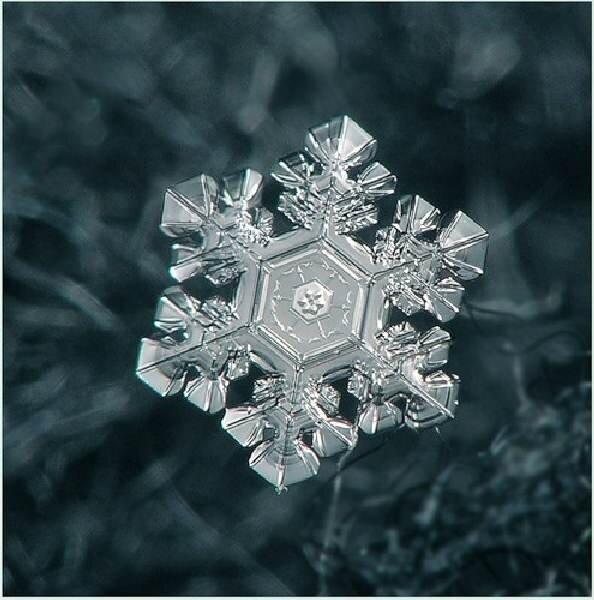 снежинки фото