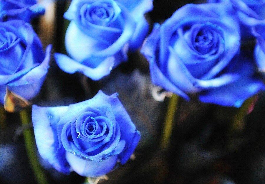 Мужской букет Цветы в подарок мужчине от Grand Flora
