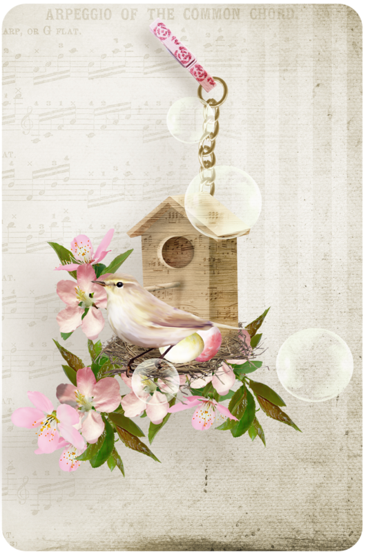 KDesigns_Bird_Song_Journal_Cards_4x6_(1).png