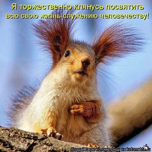 http://img-fotki.yandex.ru/get/5407/131884990.33/0_8f134_89266fdb_L.jpg