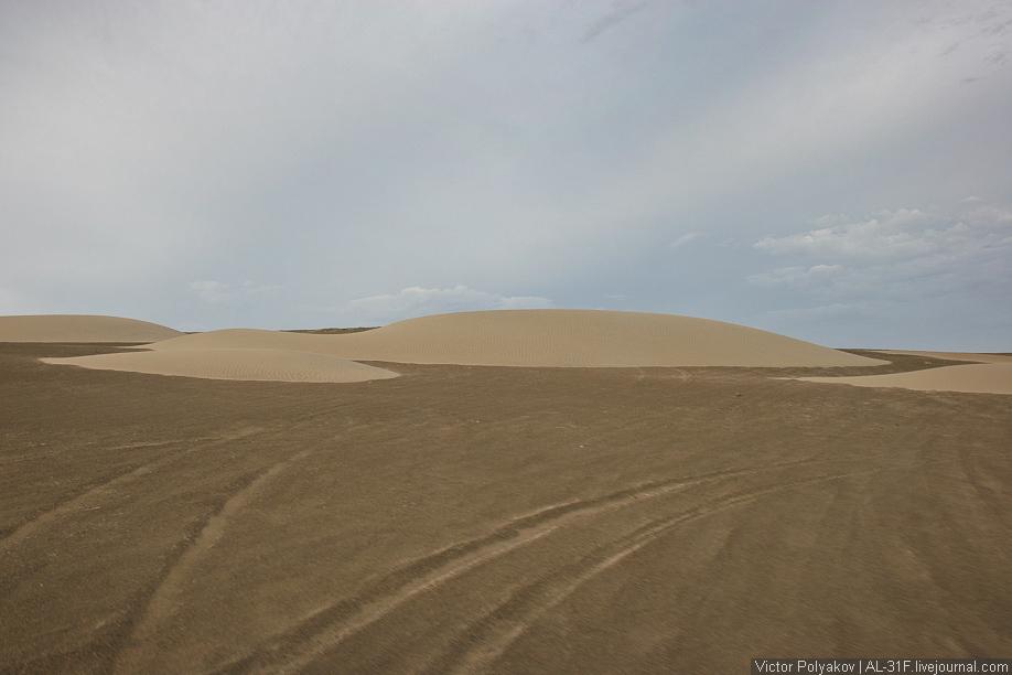 Пустыня Наска. Перу