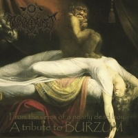 Minneriket >  From The Veins Of A Nearly Dead Boy – A Tribute To Burzum (2017)