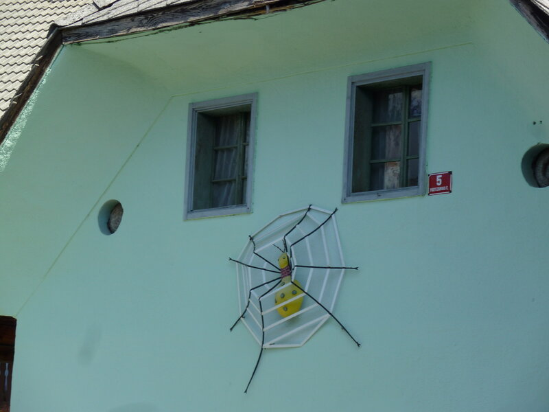 Такие паучки на жилых домах распространены во всей Словении