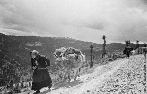 Гражданская война в греции 1946 1949