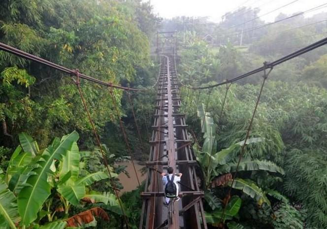 мост над джунглями индонезия остров ява 2