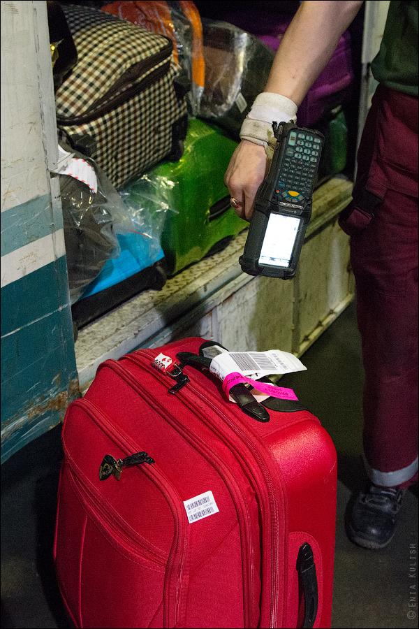 Как сортируют багаж в аэропорту Домодедово