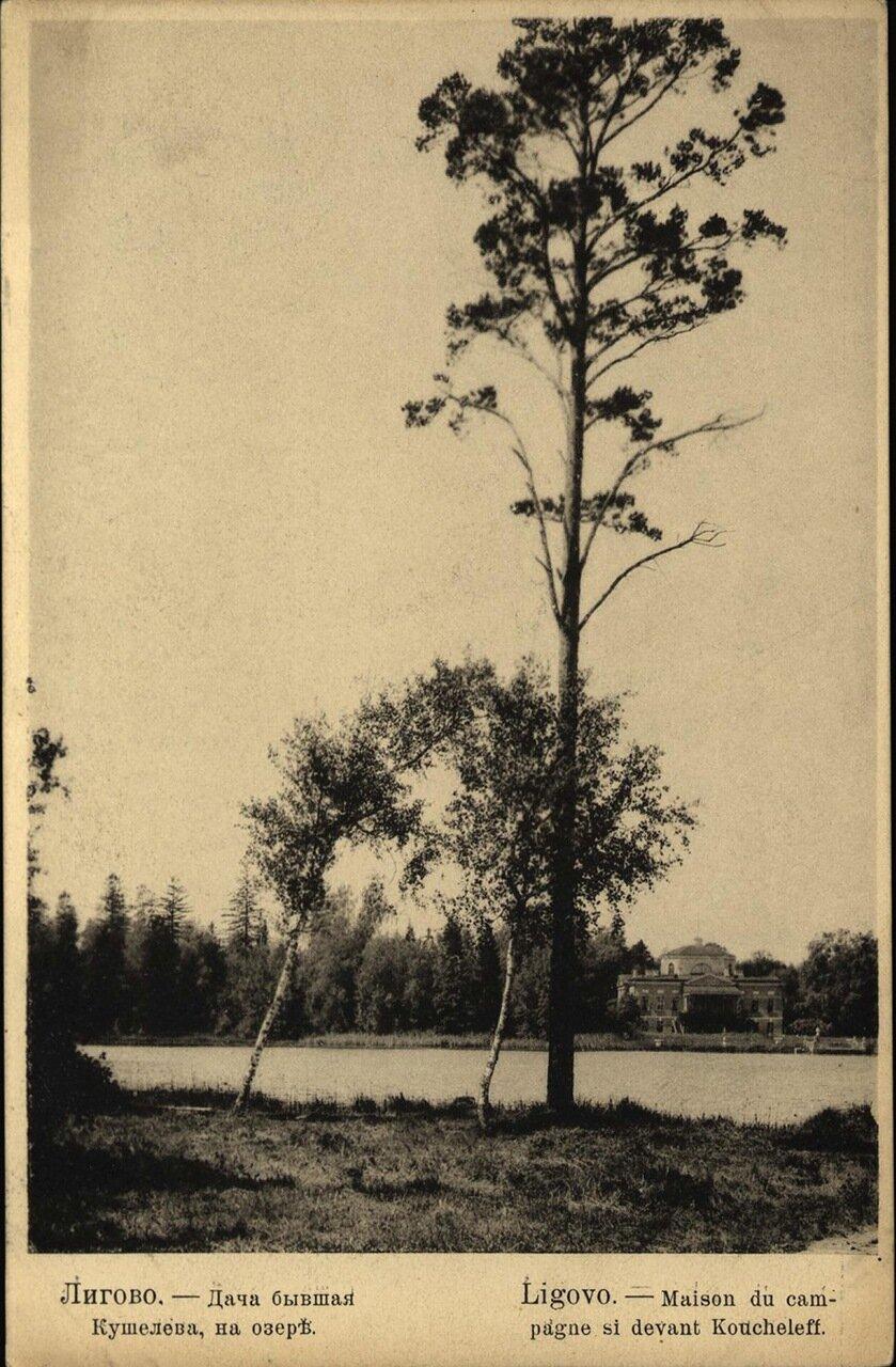 Дача бывшая Кушелева, на озере