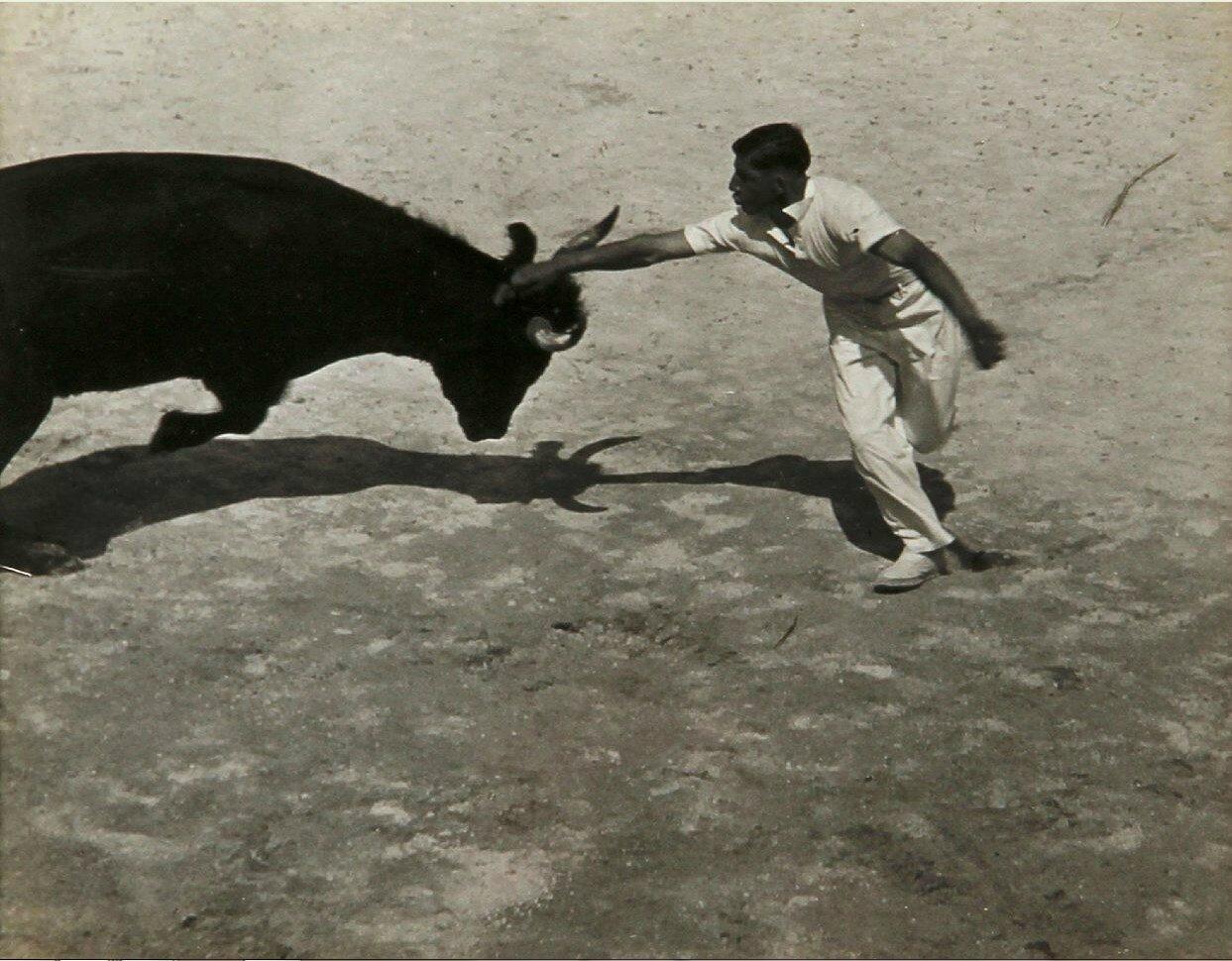 1936.  Гонки с быками в Провансе, Сент-Мари-де-ла-Мер. Часть 1
