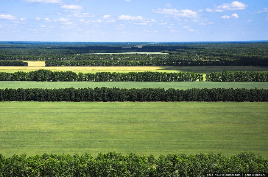 всё как фото природа новосибирской области ламинат