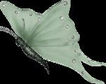 бабочки 0_50e69_2e464a9b_S