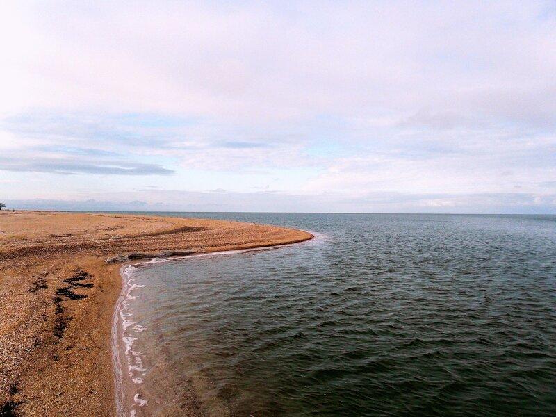 Осенний берег песчаный