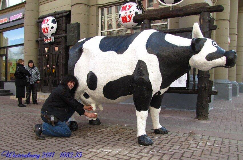 Бабу доят как корову видео фото 635-740