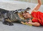 Паттайя. Крокодиловое шоу.