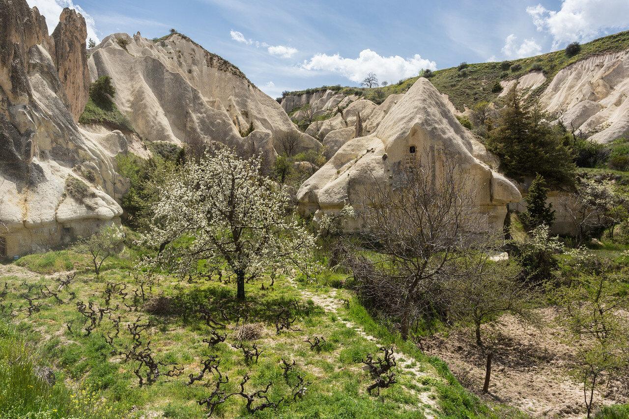 cappadocia-9548.jpg