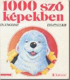 Книга 1000 szo kepekben