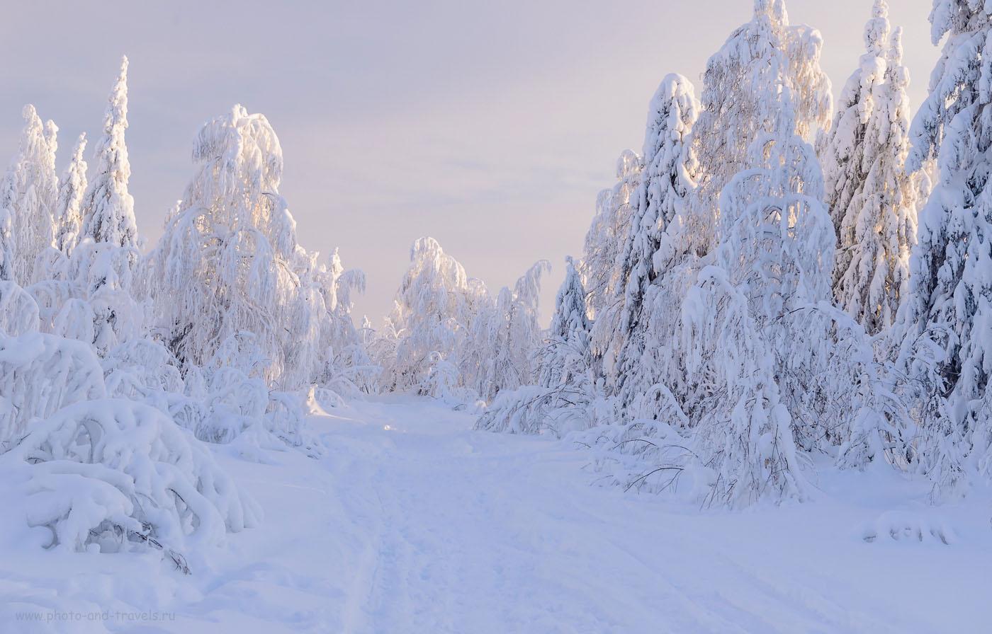 33. Сказочный лес в Пермском крае. Как мы ходили на Каменный город в январе. 1/200, 8.0, 640, 48.