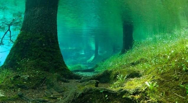 Зелене озеро