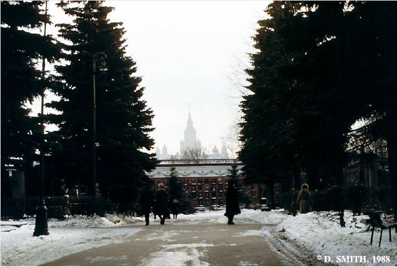 Зима на Новодевичьем кладбище