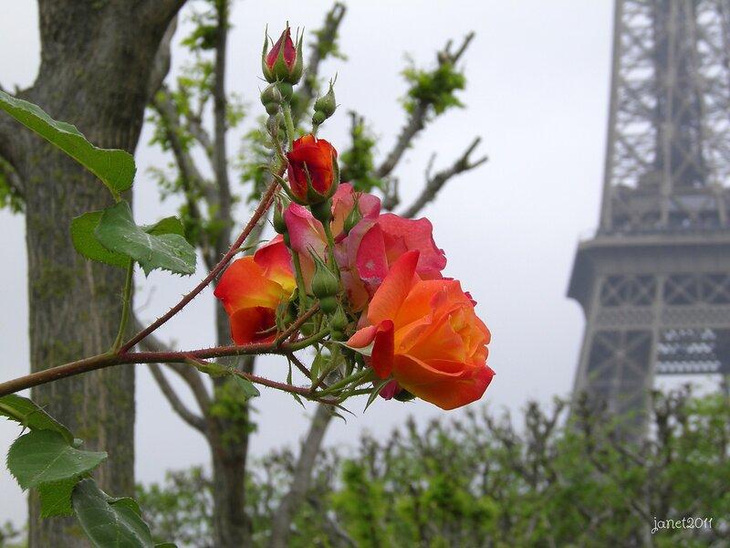 Прогулка по Парижу в мае!