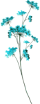 Lilas_Blue-Love_elemt (56).png