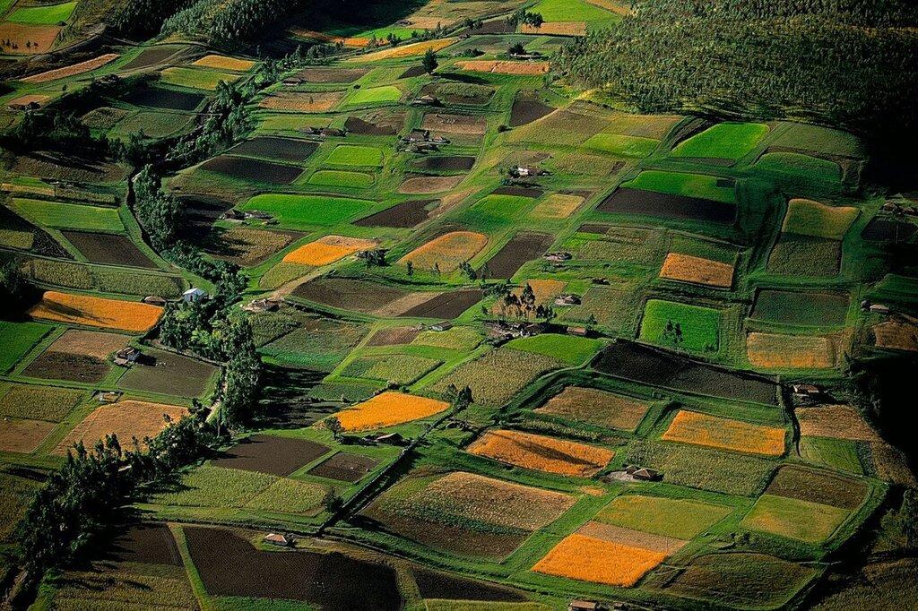 Аэрофотография фотографа Яна Артюса-Бертрана