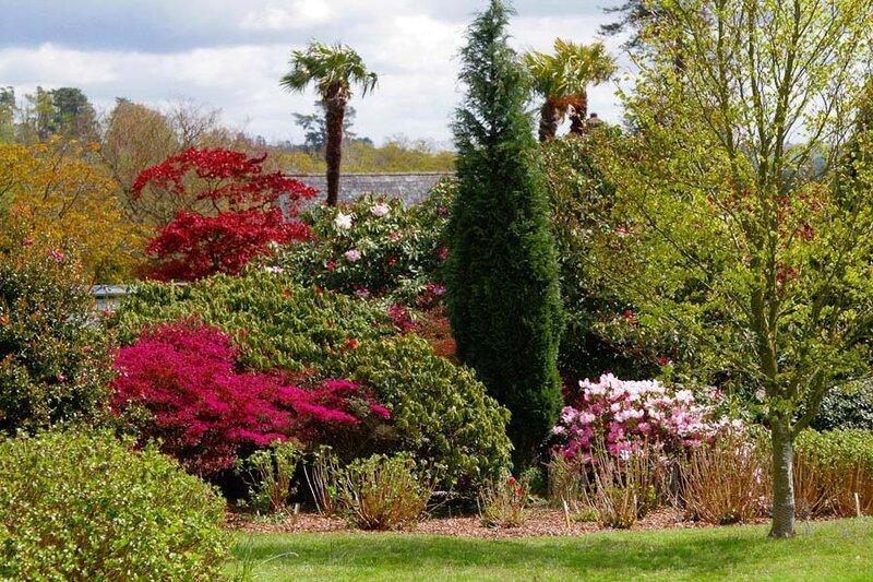 Весна в саду Леонардсли