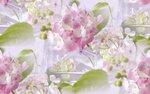 blooms7_1 (18).jpg