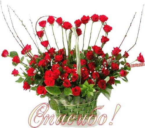 http://img-fotki.yandex.ru/get/5409/121939171.5/0_6e5d4_e4ec9435_L
