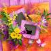 yscrapange_floral_symphonie_qp (5).png