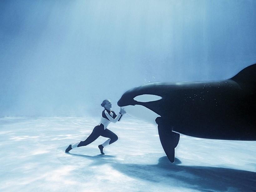Беременная женщина и дельфин акушер 0 12e244 4a8fccf0 orig