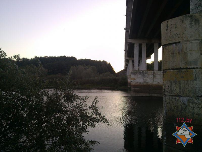 В Чечерском районе с моста в Сож прыгнул человек