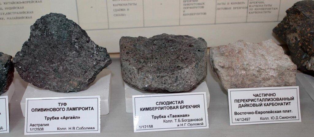 Туф оливинового лампроита; слюдистая кимберлитовая брекчия; частично перекристаллизованный дайковый карбонатит