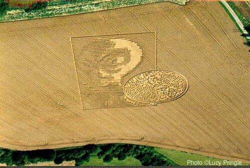 Фотография(рисунок) пришельца на пшеничном поле 0_6a126_afe50d98_L