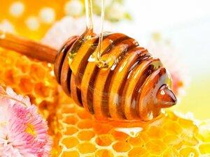 В Приморье не допущен ввоз в РФ свыше 40 тонн мёда из Китая