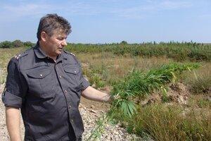 В Приморье набирает обороты операция «Мак»: уничтожено 23 тонны наркорастений