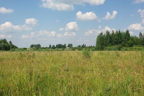 Русская деревня 2010